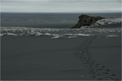 ICELAND_0585